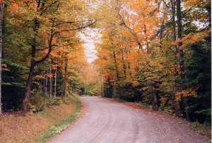 Fall foliage in Vermont. Image credit: vtliving.com