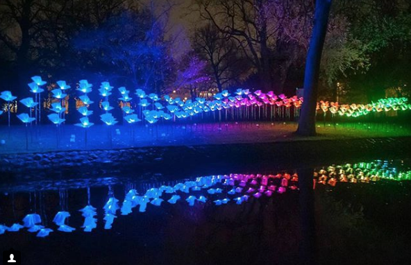 New for 2018, the @MyBGE Light Art Walk consists of 21 brand new light installations including On the Wings of Freedom presented by @kpthrive from 2016 returning artists @aetherhemera.