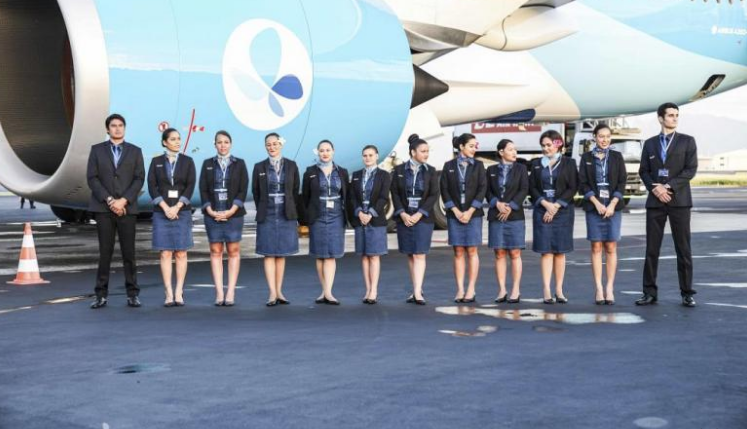 French Bee Serves Up New Service to Paris from Newark