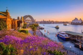 Sydney-CC-Destination-NSW-scaled